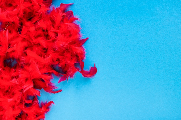 Flat lay of red feathers with copy space
