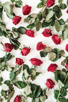 Плоский узор из красных роз на белом фоне