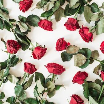 화이트에 평평하다 빨간 장미 꽃 패턴
