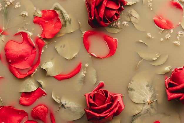 Flat lay red roses and petals in brown colored water