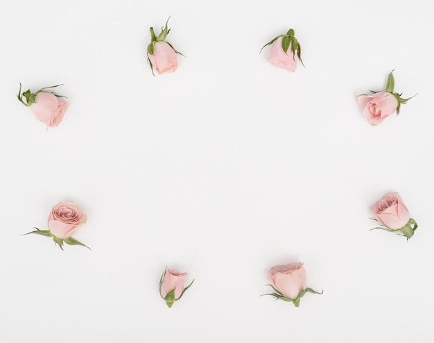 Плоские лежал розовые бутоны кадра и копирования космический фон