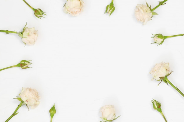 Flat lay roses on white background