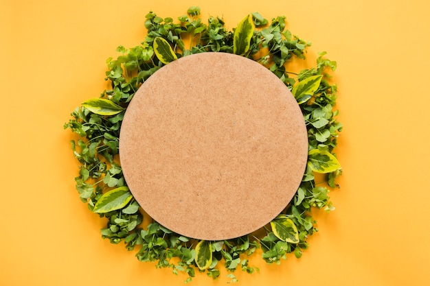 Flat lay of round paper on leaves