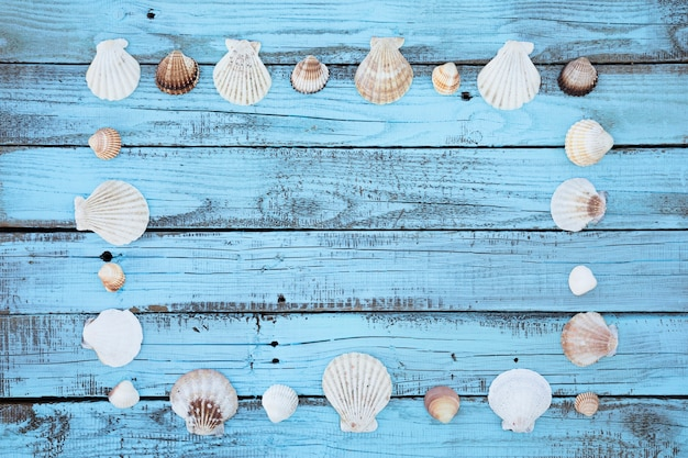 Flat lay seashells frame on wooden board
