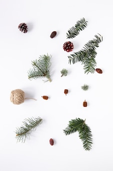 Flat lay seasonal pine leaves on plain background