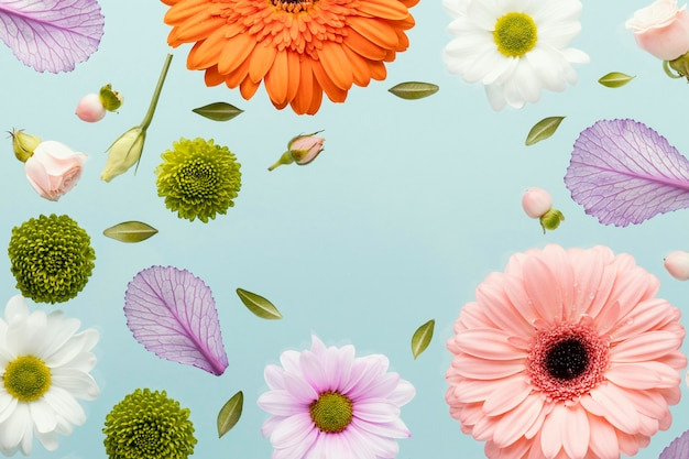 Flat lay of spring gerbera flowers with daisies and leaves