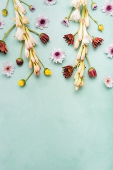 Flat lay of spring orchids and daisies with copy space