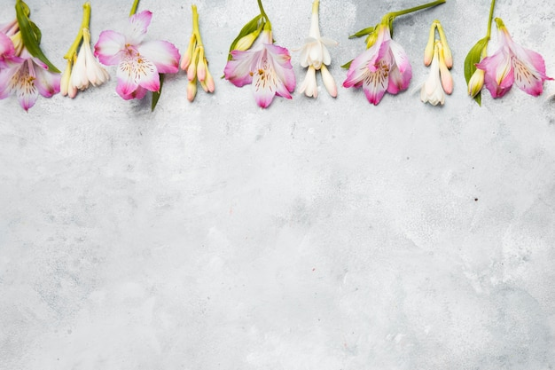 Flat lay of spring orchids with copy space