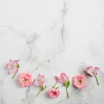 Flat lay of spring roses and orchids with marble background and copy space