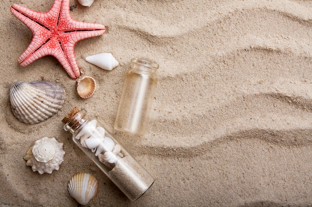 Flat lay starfish and shells on the sand. the concept of summer vacation at sea