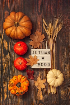 Плоская планировка натюрморт осеннее настроение. тыквы, колосья пшеницы, кленовые листья и лайтбокс на коричневом деревянном фоне.