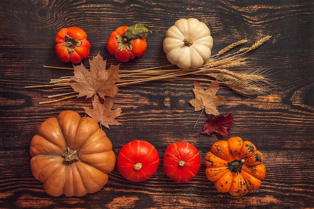 Плоская планировка натюрморт осеннее настроение. тыквы, колосья пшеницы, кленовые листья с копией пространства на коричневой деревянной предпосылке.