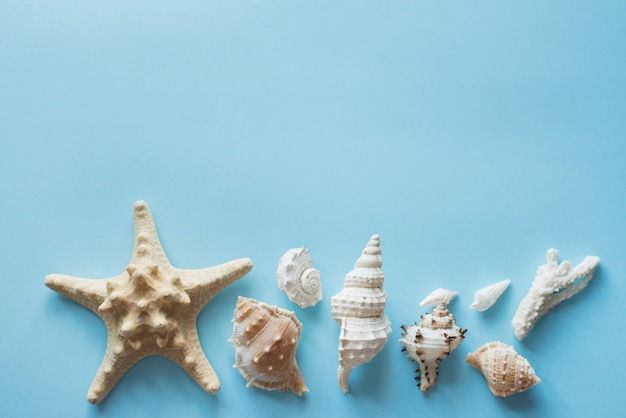 Flat lay traveler accessories, copy space with sea shells, money and sunglasses.