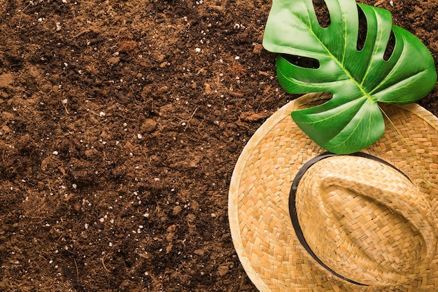 Flat lay of tropical leaf and hat on soil