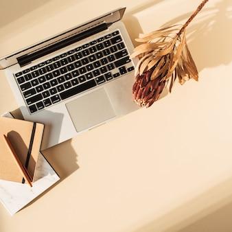 노트북, protea 꽃 및 노트북의 평면 위치보기. 최소 여자 보스 블로그 작업 개념