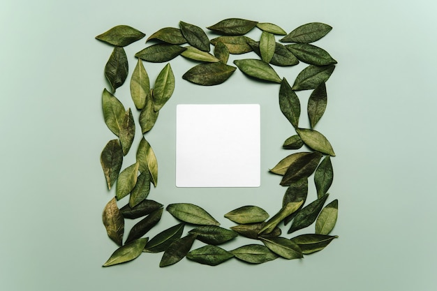 Flat lay of white blank card or note with green natural leaves background.