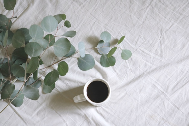 Flat lay white ceramic mug with coffee next to silver dollar gum tree leaves on white bed-sheet