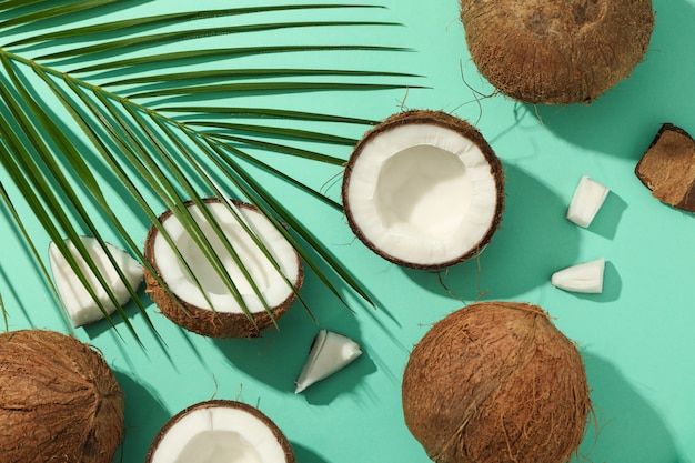 민트, 평면도에 코코넛과 야자 가지와 평면 누워
