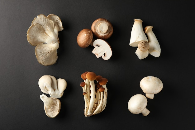 Flat lay with different mushrooms on black, top view
