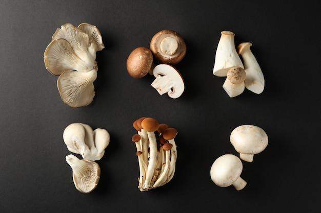 Плоская планировка с разными грибами на черном, вид сверху