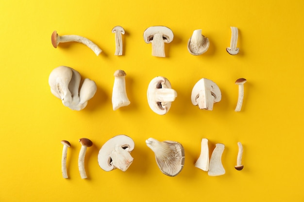 Flat lay with different mushrooms on yellow, top view