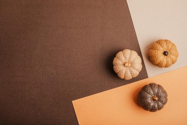 Плоская планировка с расписанными вручную гипсовыми тыквами и копией пространства. макет карты осенних праздников