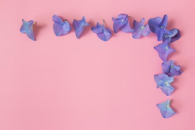 ピンクの表面にアジサイまたはオルテンシアの青紫色の花びらが付いたフラットレイ