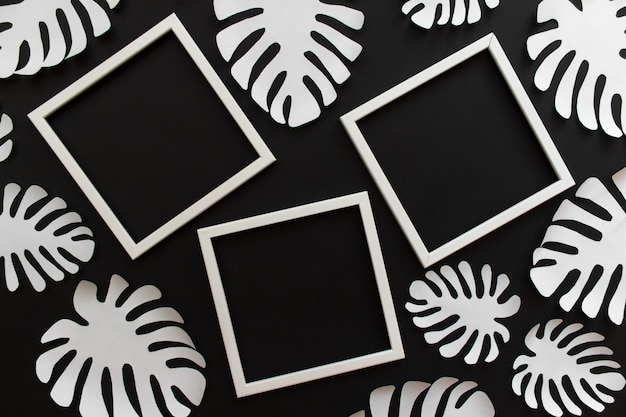 Flat lay with tropical leaves and white frames with copy blank space