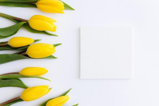 黄色いチューリップの花、白い背景の上の空の額縁とフラット横たわっていた。イースター、母の日、国際女性の日、聖バレンタインの日のグリーティングカードのコンセプト