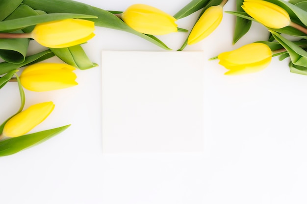 Flat lay with yellow tulip flowers and empty picture frame on white surface