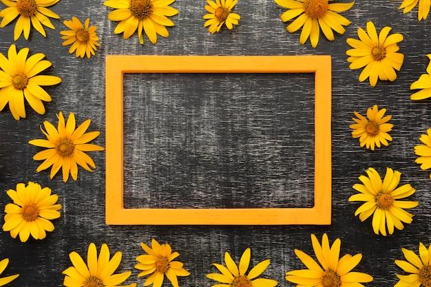 Рамка с плоскими желтыми ромашками