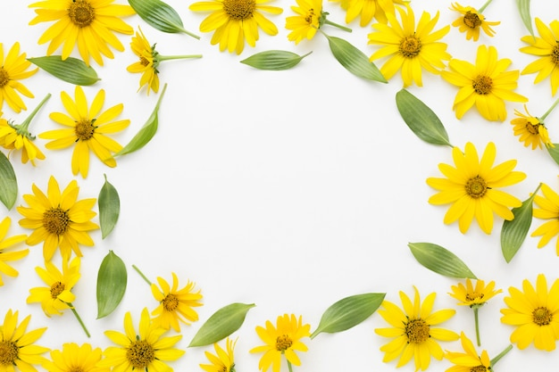 Flat lay yellow daisies frame