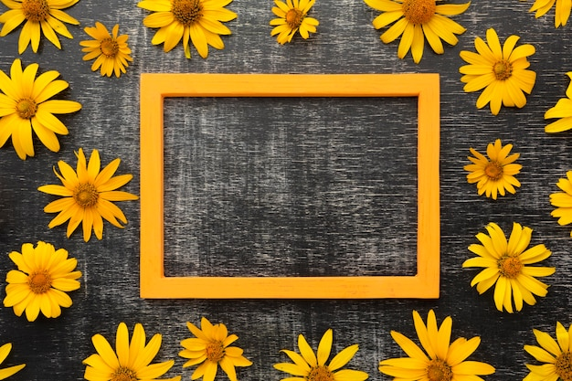 Flat lay yellow daisies and frame
