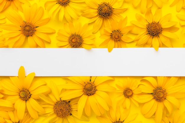 Flat lay yellow daisies with blank stripe