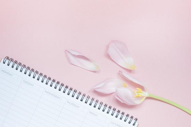 Розовый тюльпан с открытым пустым настольным планировщиком flat lay