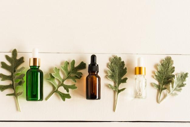 에센셜 천연 오일과 식물의 은빛 잎이 있는 다양한 색상과 모양의 피펫이 있는 화장품 병의 평평한 레이아웃. 복사 공간입니다.