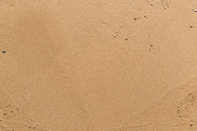 Flat sand on a beach textured backdrop