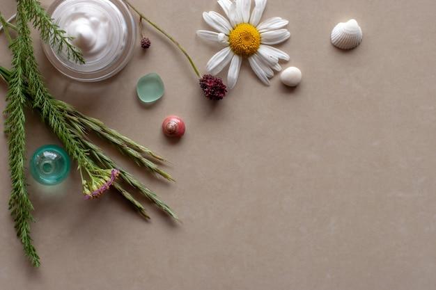 Плоский вид веточки растений цветочные ракушки и сливки в банке фон спа