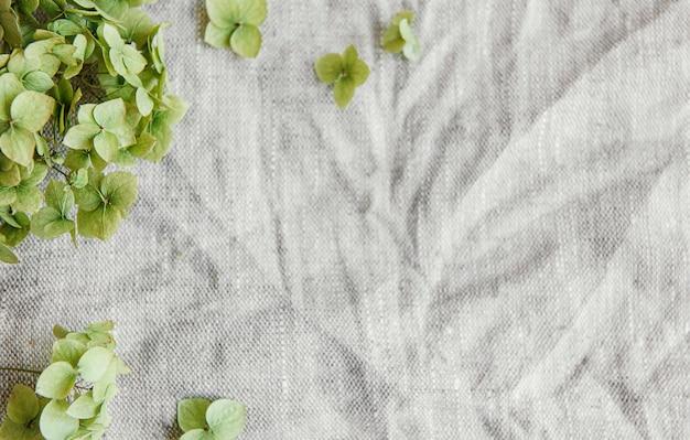 회색 섬유 배경에 녹색 수국의 flatlay입니다. 최소한의 개념. 평평한 평지, 평면도, 복사 공간.
