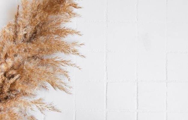 타일 배경에 팜파스 풀의 flatlay입니다. 최소한의 개념. 평평한 평지, 평면도, 복사 공간.