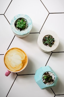 Flatlay with a cup of soy latte in a pink mug on ceramic table and succulent flowers in cement pots