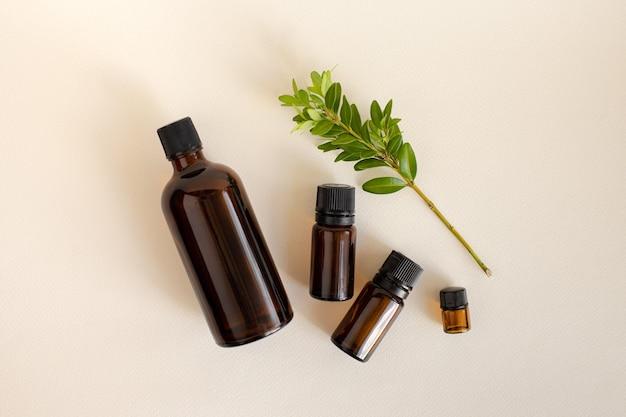 緑の小枝とベージュの背景にケア化粧品のための茶色のボトルからのフラットレット。自然なセルフケアの概念。オーガニックでナチュラルな化粧品。