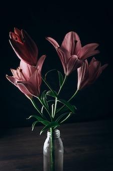 黒い木製の背景に美しいユリの花、flavii様々な。
