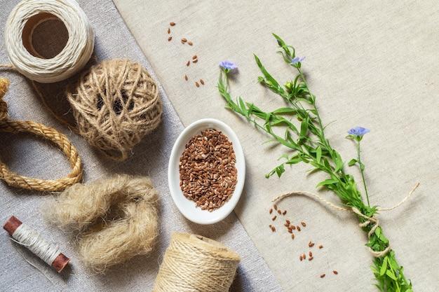 亜麻製品、油、亜麻布の種子、咲く亜麻
