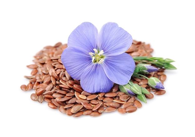 Семена льна с цветами крупным планом на белом
