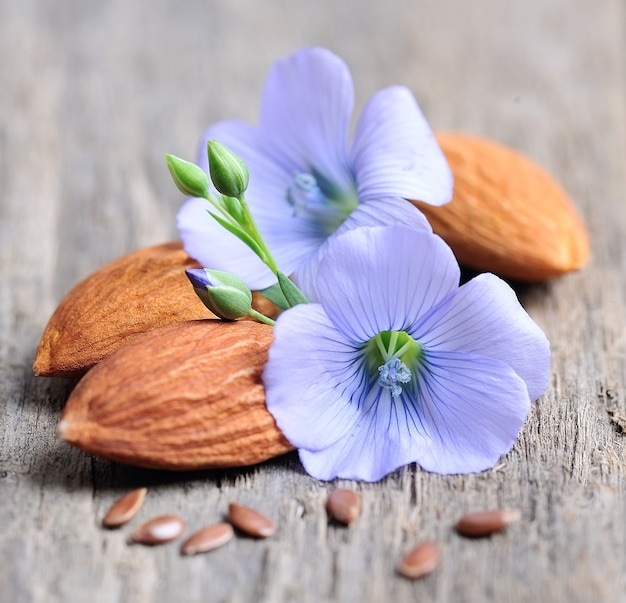 Flaxseed flowers  and almonds on wooden texture