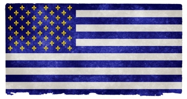 Сша fleurs de lys гранж флаг
