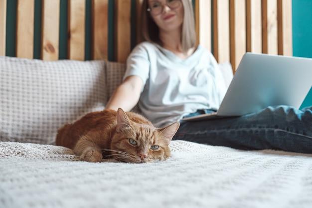 Гибкий график и удаленная работа, домашняя кошка лежит на кровати, женщина использует ноутбук для работы, лежит в спальне, дома