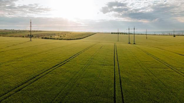 어린 봄 밀과 고압선이 있는 농경지 위의 무인 항공기 비행 밀 푸른 하늘과 전력선의 공중 전망