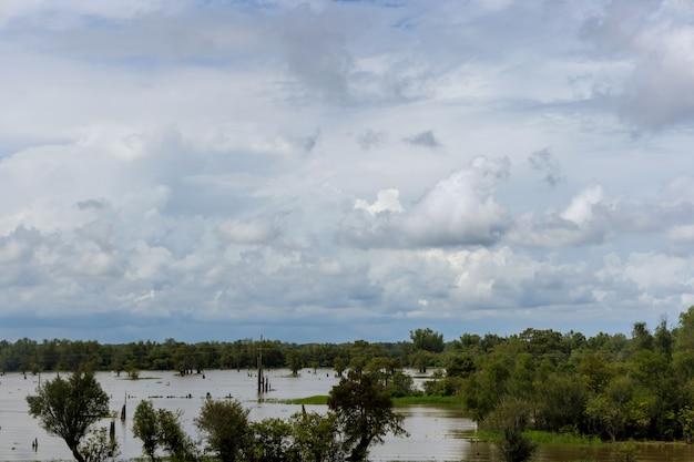 Наводнение при затоплении лугов, полей, сельской местности с деревьями